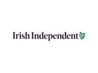 irish independent dublin seo